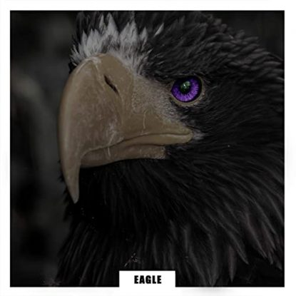 BYAS Eagle